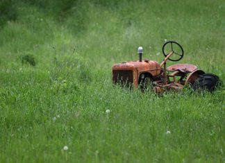 Tips-to-Recycle-Your-Old-Lawn-Mowers-Right-Away-on-passionarticles